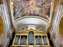 órgano 1aaa
