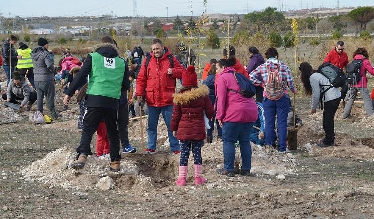 Coslada: Cientos de personas de todas las edades se suman a la plantación del Parque del Humedal
