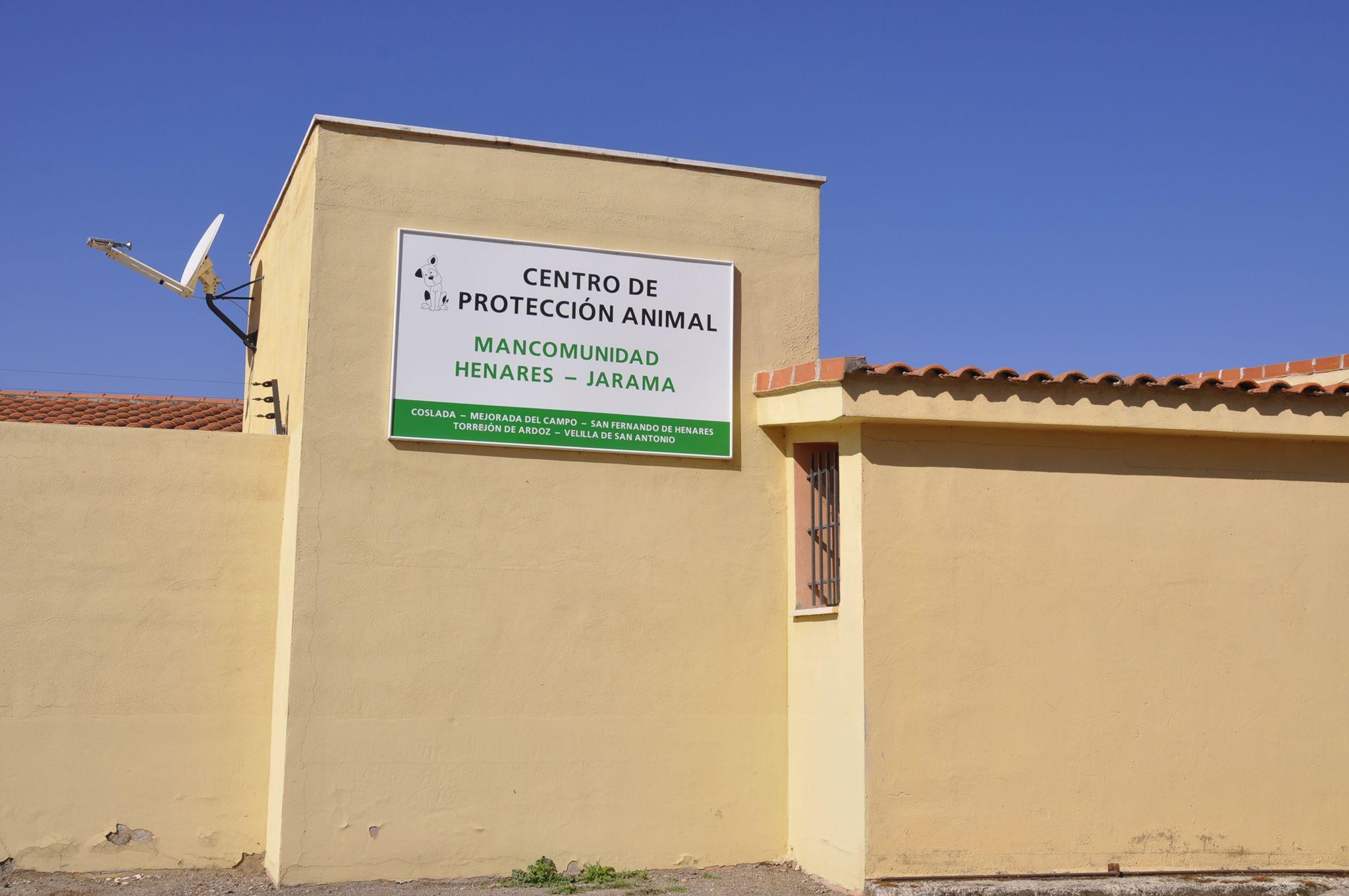 La Mancomunidad Henares-Jarama implanta un servicio de recogida de animales 24 horas, 7 días a la semana.