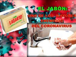 Portada Jabón LagartoRED201