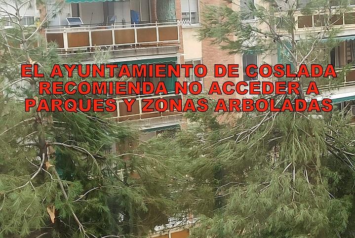 El Ayuntamiento de Coslada recomienda a los vecinos No acceder a los parques y zonas arboladas.