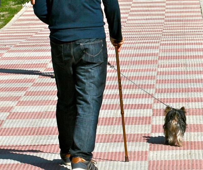 'Pisa tranquilo, cacas NO': Coslada desarrolla una campaña de control de animales domésticos y  control de excrementos caninos.