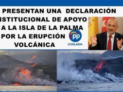 501-pORTADA aPOYO iNSTITUCIONAL